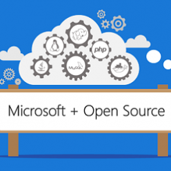 Microsoft and Open Source 250x250